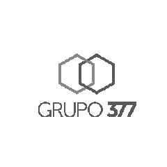 Grupo 377